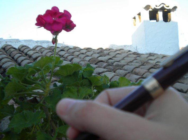 Foto 3. Una clase en la terraza